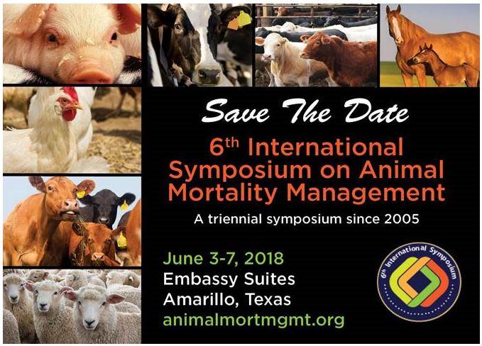 6th International Symposium